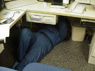 Sharyn-under-desk1